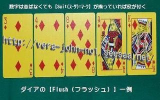 Flush-DiaSuit-Ywbt.jpg