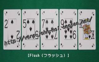 Flush400-250.jpg