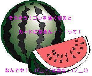 natu_0007.jpg