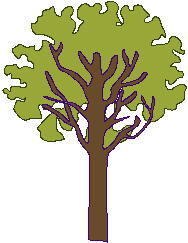 plants_0041.jpg
