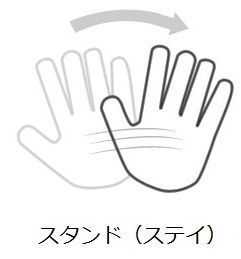ZC-BJhandsignal4.jpg